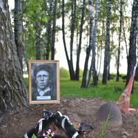 Временное захоронение.Горностаев Павел Степанович. Кривцовский мемориал 2016 год.