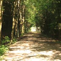 Въезд в бывший пионерский лагерь Чайка