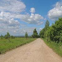 Дорога в деревню Макаровку