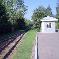 Станция Пионерская