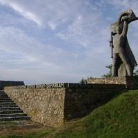 Памятник, Гайна, общий вид