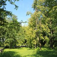 Парк у ГРЭС 5