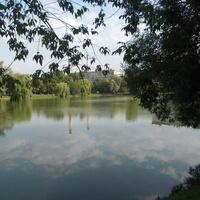 Новодевичьий пруд