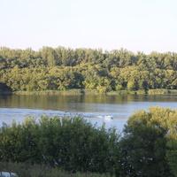 Тамбов. Река Цна.