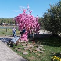 Белгород Зоопарк