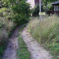 Русениха - Съезд к реке Ветлуге