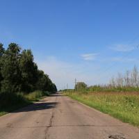 Дорога в посёлок Северная Грива