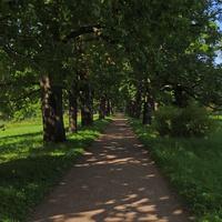 Аллея вдоль Виттоловского канала