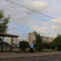 Битцевский проезд