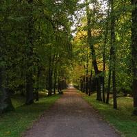 Верхний парк