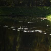 П-образный пруд