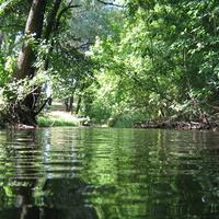 Река Корень.