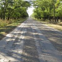 Дорога на выезд из хутора