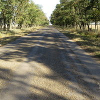 Дорога в хутор