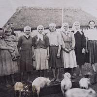 Свинарки,початок 50 років.Колгосп в центрі села.