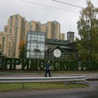 Район метро Удельная.