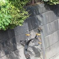 Памятный знак Блокадной колюшке
