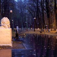 Центральная аллея в городском парке