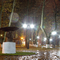 Шуя. Городской парк.