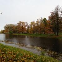 Средний пруд Большого каскада