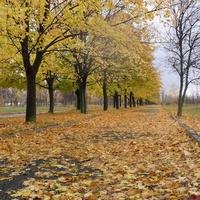 """В городе осень. Парк """"Юбилеиный"""""""