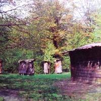 Музей народной архитектуры и быта Украины.Уголок усадьбы пасечника на Ровенщине.Фото 1977 года.