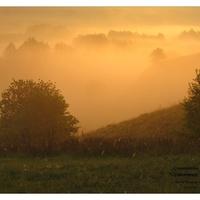 Оранжевый туман.
