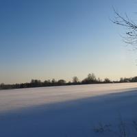 Щипцовское зимнее поле.