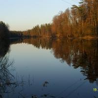 Река Поля у деревни Никитинская