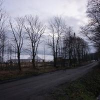 Петровская алея.