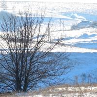 Голубые снежные тени села Скородного.