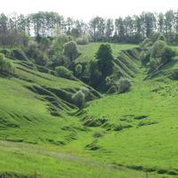 Зеленый майские бугры в селе Скородном.