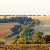 Сторожевские бугры с оврагами и поле на рассвете.