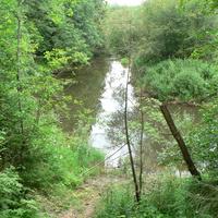 река Береза