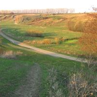 Зеленая апрельская тень накрыла теплый склон в Скородном.