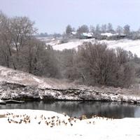 Село Скородное зимой.