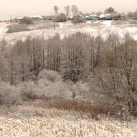 Село Скородное Курской области в инее стоит. Южный склон.