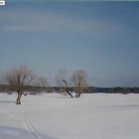 На месте бывшего села Илкодино. 1994г.