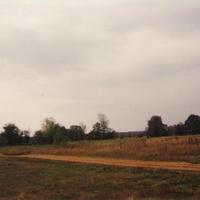 На месте бывшей деревни Селищи. 1994г.