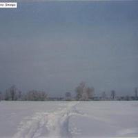 На просторах бывшей деревни Селищи. 1994г.