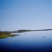 """Вид с охотобазы """"Коренец"""" на северо-восток озера Свято и остров Дубовый. Сентябрь 2003г."""