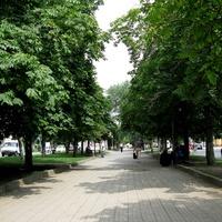 Аллея на пр.XXII партсъезда. 06.08.2009г.