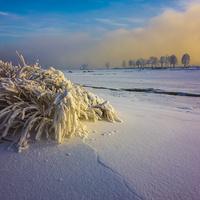 Разноцветная зима