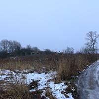 Савельево, заброшенная ферма