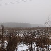 Сотниково, поле