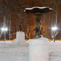 Шуйский городской парк