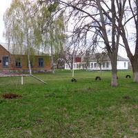 Школа в Кримках.
