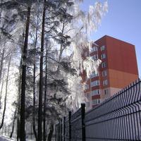 Жилой дом Александрова 8
