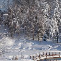 Чесноково. Зима