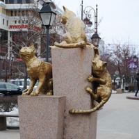 Сквер сибирских кошек.